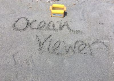 ocean viewer